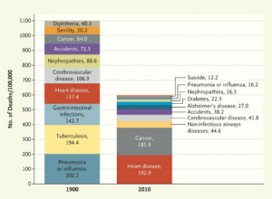 Causes of Death 1900 - 2010